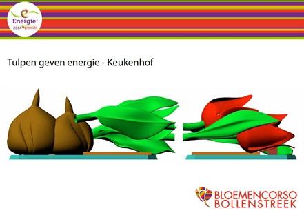 Tulpen-geven-energie_441x312
